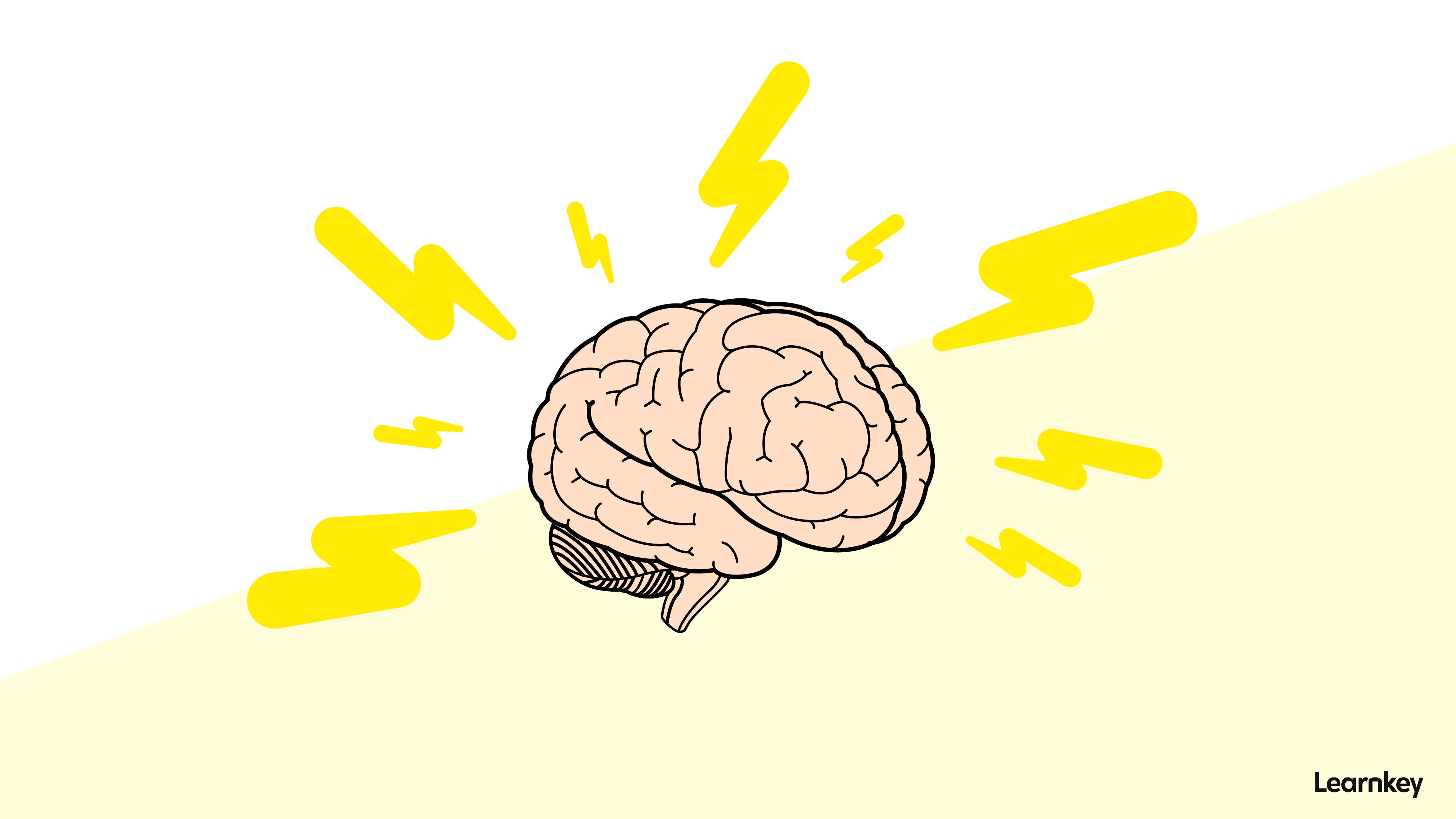smegenys smalsumas